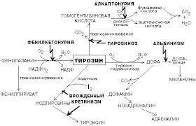 Алкаптонурия